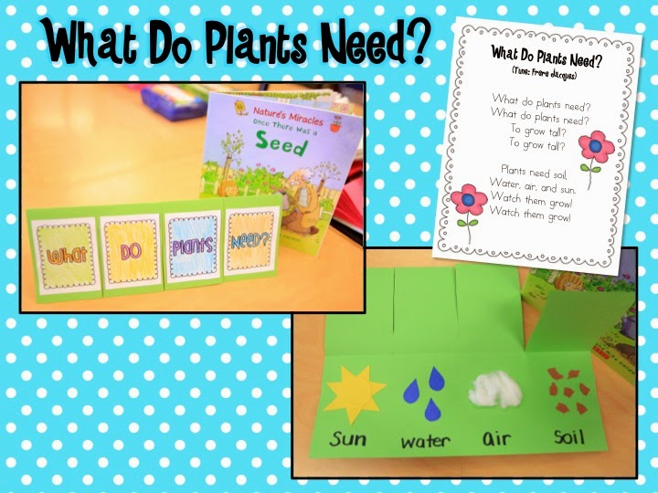 writing about plants for kindergarten