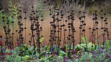 El atractivo de las cabezas de semillas y la importancia de retrasar la poda de los tallos herbáceos secos