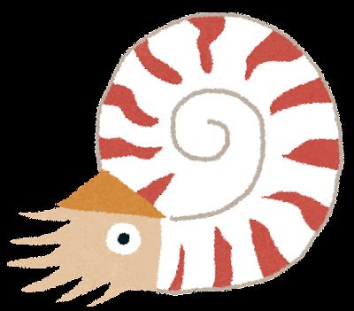 オウムガイのイラスト(古代生物)