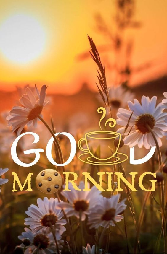 Every Morning Quotes & love Messages, Good Morning Inspiration and Have A Nice Day wishes for him and her