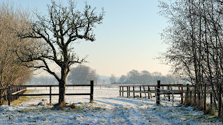 iarna gard, zapada, peisaj