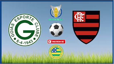 Goiás quer aproveitar instabilidade do Flamengo e se aproximar em deixar a zona de rebaixamento