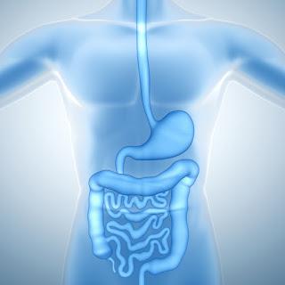 especialista aparato digestivo almeria