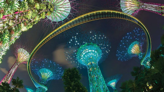 tour singapore cho trẻ em - Gardens By The Bay