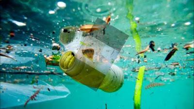 Contaminación océanos plásticos