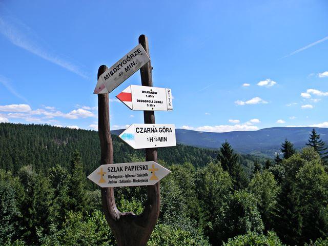 Igliczna, góry, las, Międzygórze