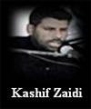 http://www.humaliwalayazadar.com/2016/09/kashif-zaidi-soz-salam-marsia.html