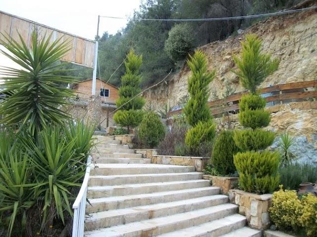 Gunman shoots seven Lebanese people dead in village of Baakline