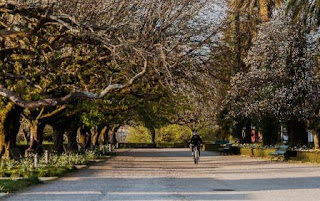 8. Parque da Alameda