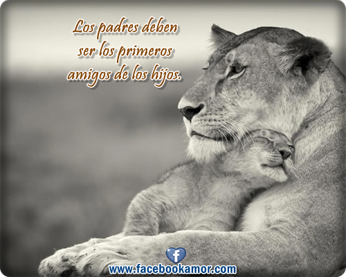Imagenes Con Frases Padres