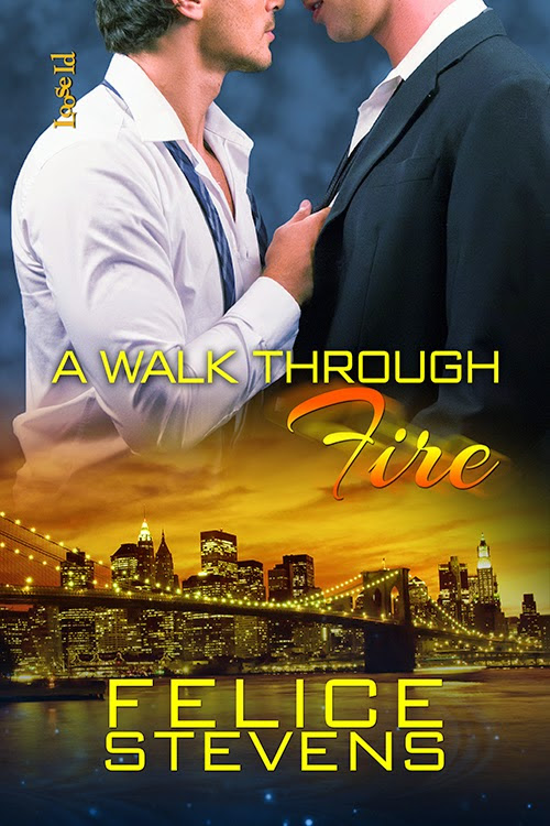 Blog Tour~ A Walk Through Fire By Felice Stevens *Excerpt & Playlist*