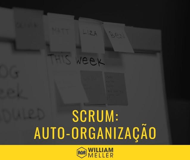 Princípio Scrum 02: Auto-organização
