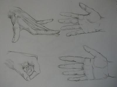 tekenen fun 2 draw egel