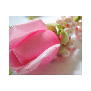 Pink rose and pearls canvas art