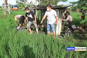 Petani Di Ngawi Tewas Tersengat Listrik Jebakan Tikus