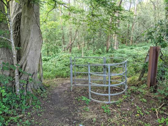 The gate into the woodland - point 8