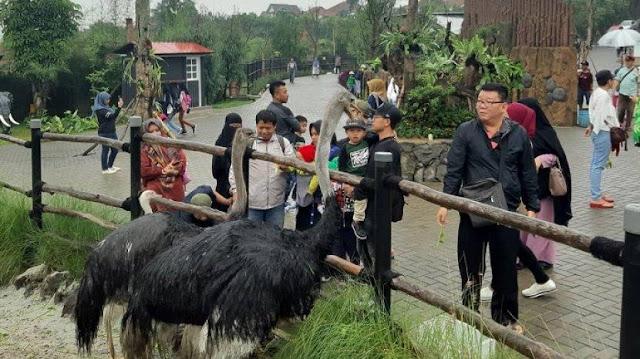 36 TEMPAT WISATA DI LEMBANG BANDUNG