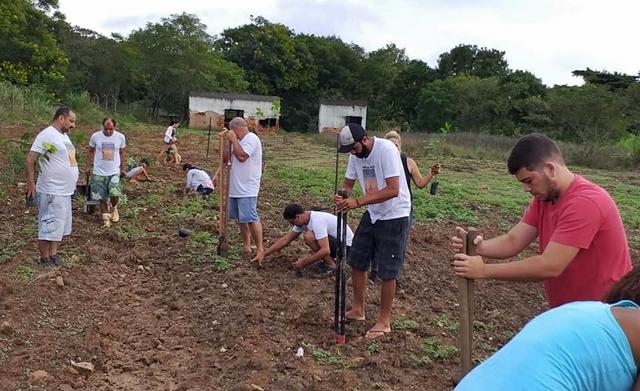 São Fidélis: Meio Ambiente promove plantio de mudas de árvores nativas