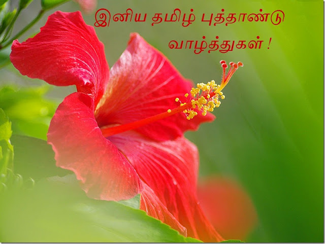 happy tamil new year wishes  happy tamil new year  tamil new   tamil puthandu   tamil puthandu