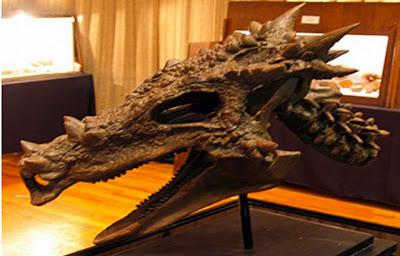 Dracorex hogwartsia,