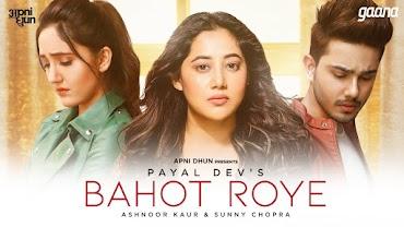 बहोत रोये Bahot Roye Lyrics in Hindi - Payal Dev