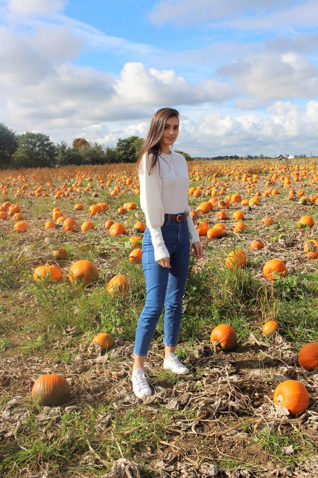 peexo blogger pumpkin patch essex foxes farm produce