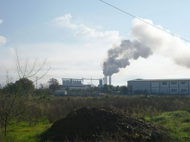 """Μεγάλες υπερβάσεις των πυρηνελαιουργείων στη Μεσσηνία που """"μπορεί να έχουν επιπτώσεις στη δημόσια υγεία"""""""