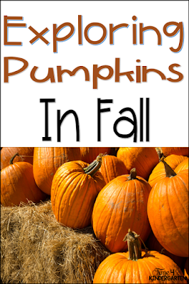 pumpkin math in kindergarten, pumpkin exploration math and science