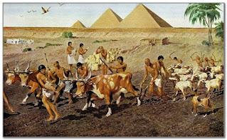 L'importanza dell'agricoltura e del Nilo nella civiltà egizia