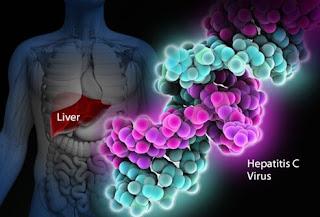 A colossal overview on HCV symptoms