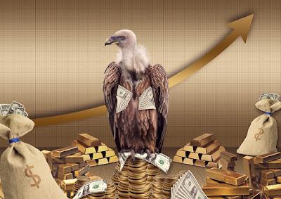 Buitre del dinero