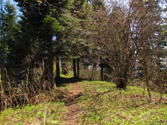 Grzbietowa ścieżka przechodząca przez szczyt góry Żar (882 m n.p.m.)