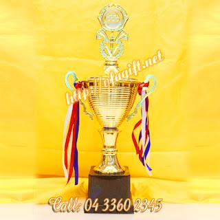 chuyên cung cấp cúp vinh danh giải thưởng,cúp sự kiện thể thao,in cúp theo yêu cầu