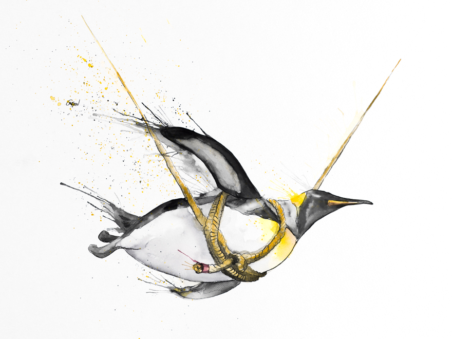 12-Penguin-Philipp-Grein-Animal-Paintings-in-Splashes-of-Color-www-designstack-co