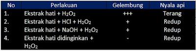 Soal UN Biologi dan Pembahasan Materi Tentang Enzim dan Metabolisme