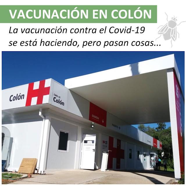Las vacunas en Colón...