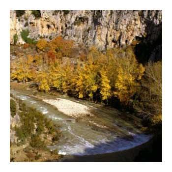riu de les Truytes, que es prop la Glesiola