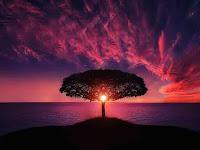 kumpulan puisi tentang indahnya malam