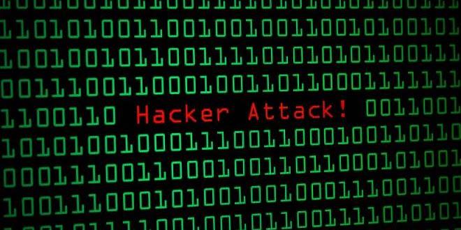 Masih Pemula Dalam Bidang Hacking? Ikuti Langkah Berikut Agar Kamu Terlihat Profesional