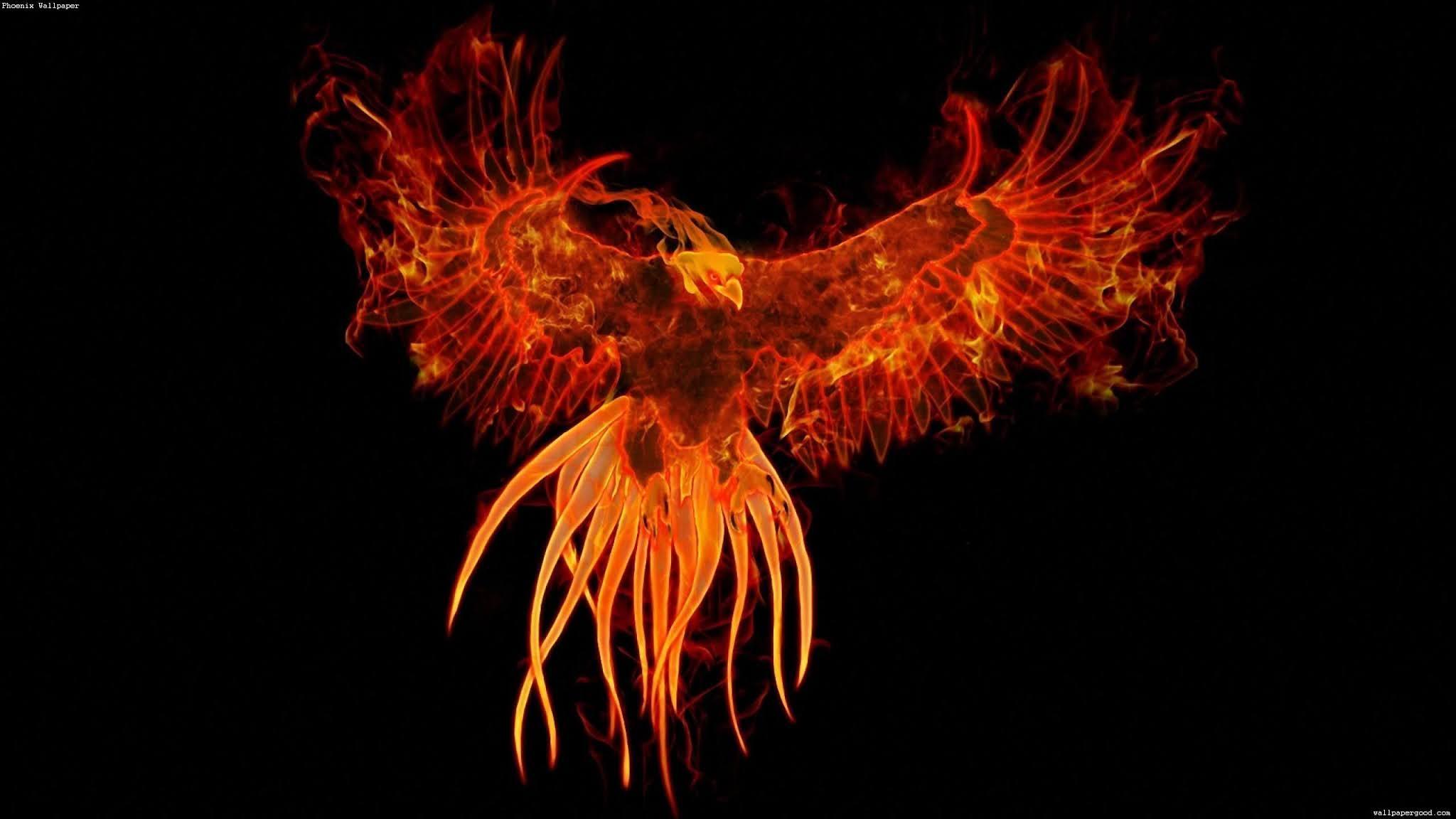 phoenix az background image