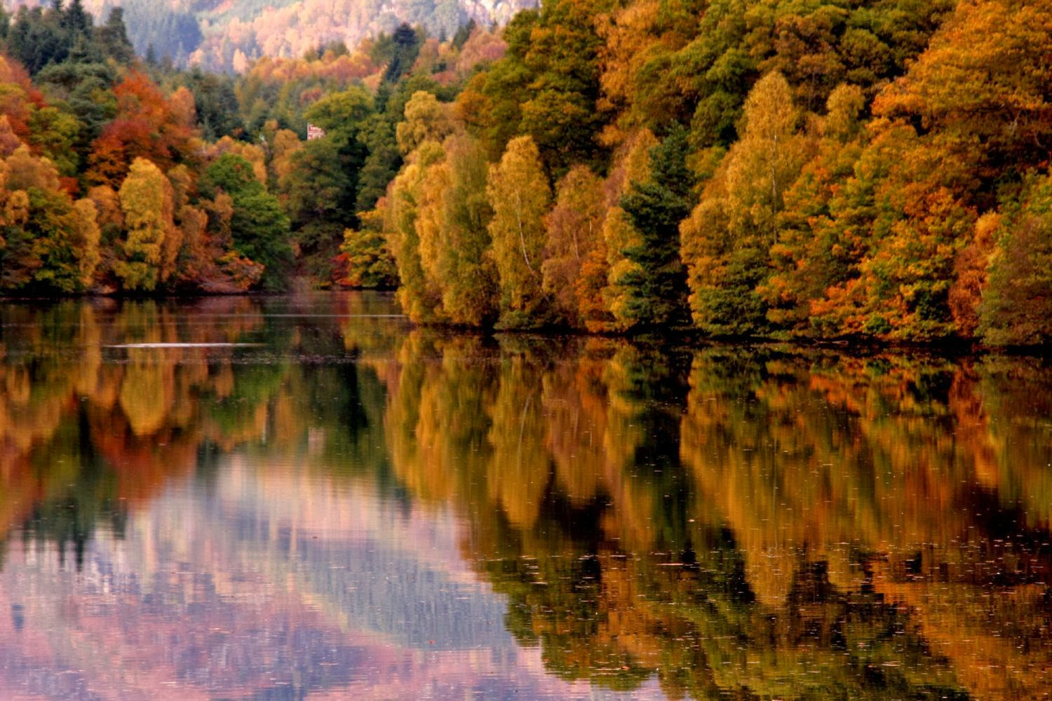 Autumn In The Highlands Of Scotland...a Quote By One Of My Favorite  Authors. U201c