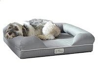 Best Memory Foam Dog Bed - PetFusion Ultimate Dog Lounge