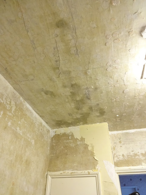 ceiling during tile removal