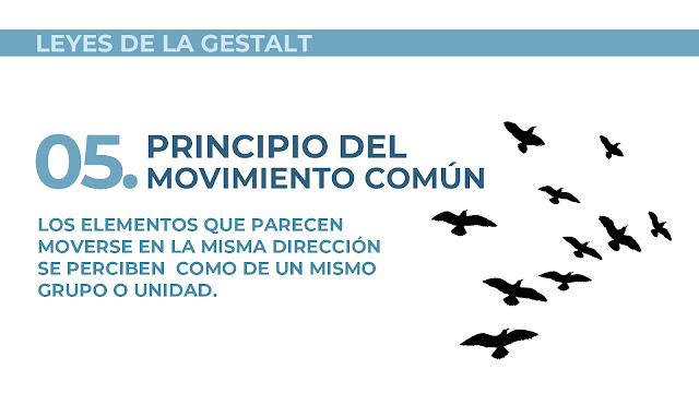 Ley del movimiento común