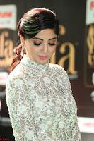 Poonam Kaur in Beautiful Floor Length Gown at IIFA Utsavam Awards 2017  Day 2  Exclusive 38.JPG