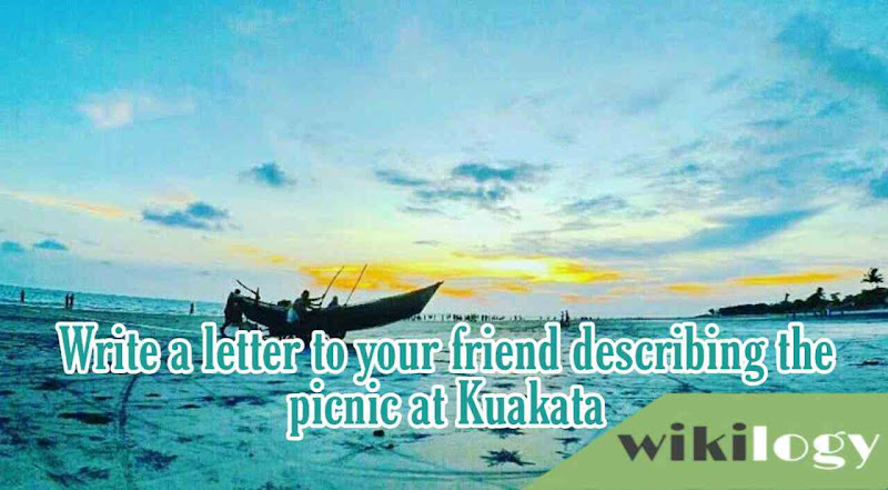 Write a letter to your friend describing the picnic at Kuakata