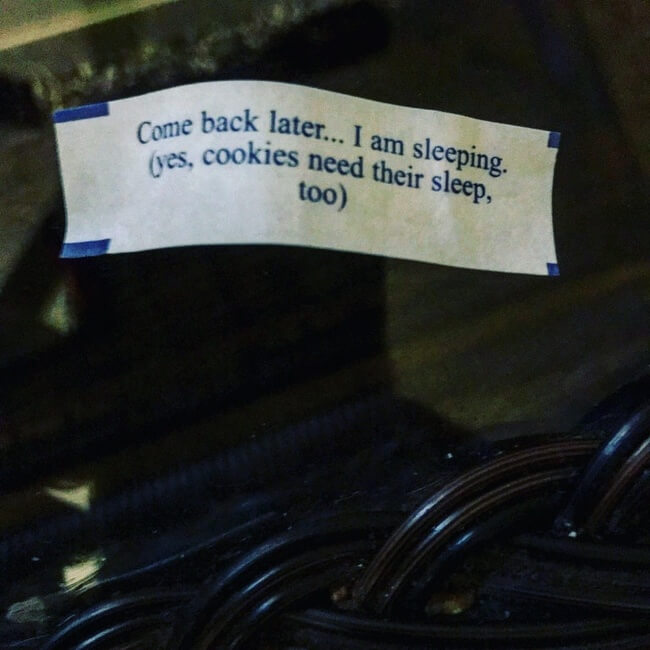 27 Pictures Show That The World Has A Plan For All Of Us - Even the fortune cookies can have bad days sometimes.