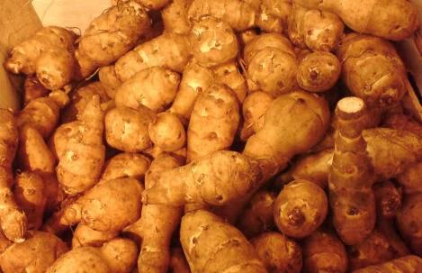 poza napi topinambur pentru slabire si detoxifiere -leguma care seamana cu cartoful