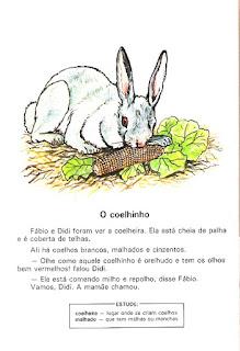 Leitura o coelhinho