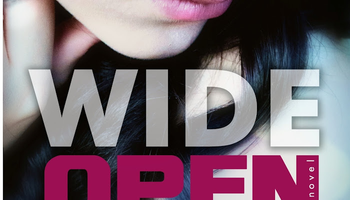 Cover Reveal : Wide Open